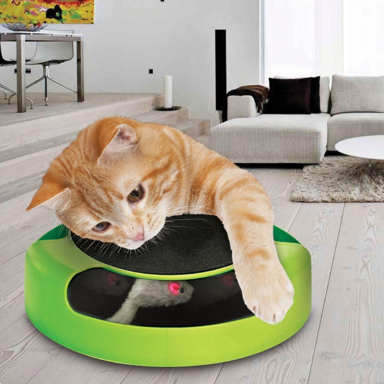 juguetes de gatos